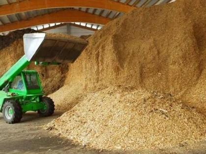 Il Veneto promuove l'uso delle biomasse